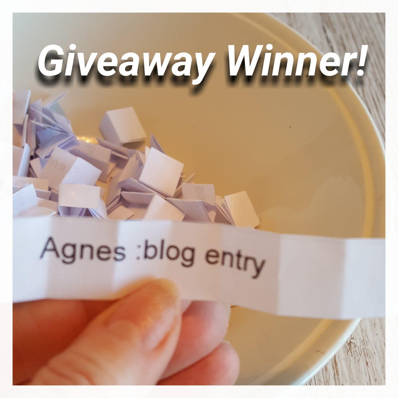 Blogiversary Giveaway Winner